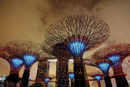 Solar-powered 'supertrees' at Singapore's Gardens by the Bay