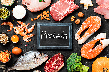 Protein source foods