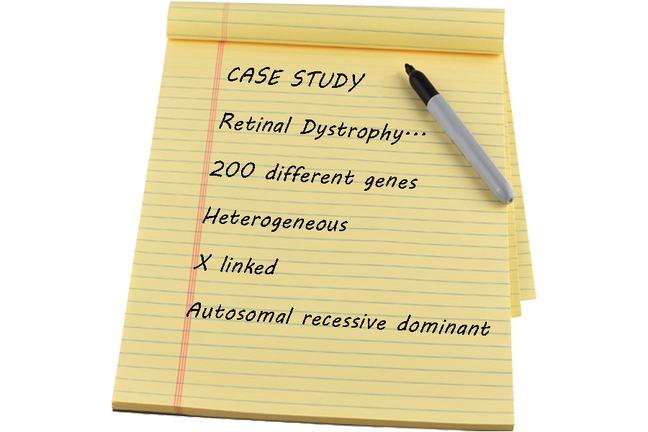case study details