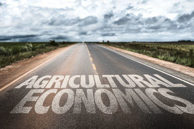 A photograph of a straight road disappearing into the distance. There are fileds on either side. The words AGRICULTURAL ECONOMICS are superimposed on the road.