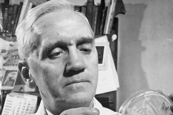 the discovery of antibiotics by alexander fleming Sir alexander fleming  best known for his discovery of penicillin alexander fleming was born in ayrshire on 6 august 1881, the son of a farmer he moved to london at the age of 13 and later.