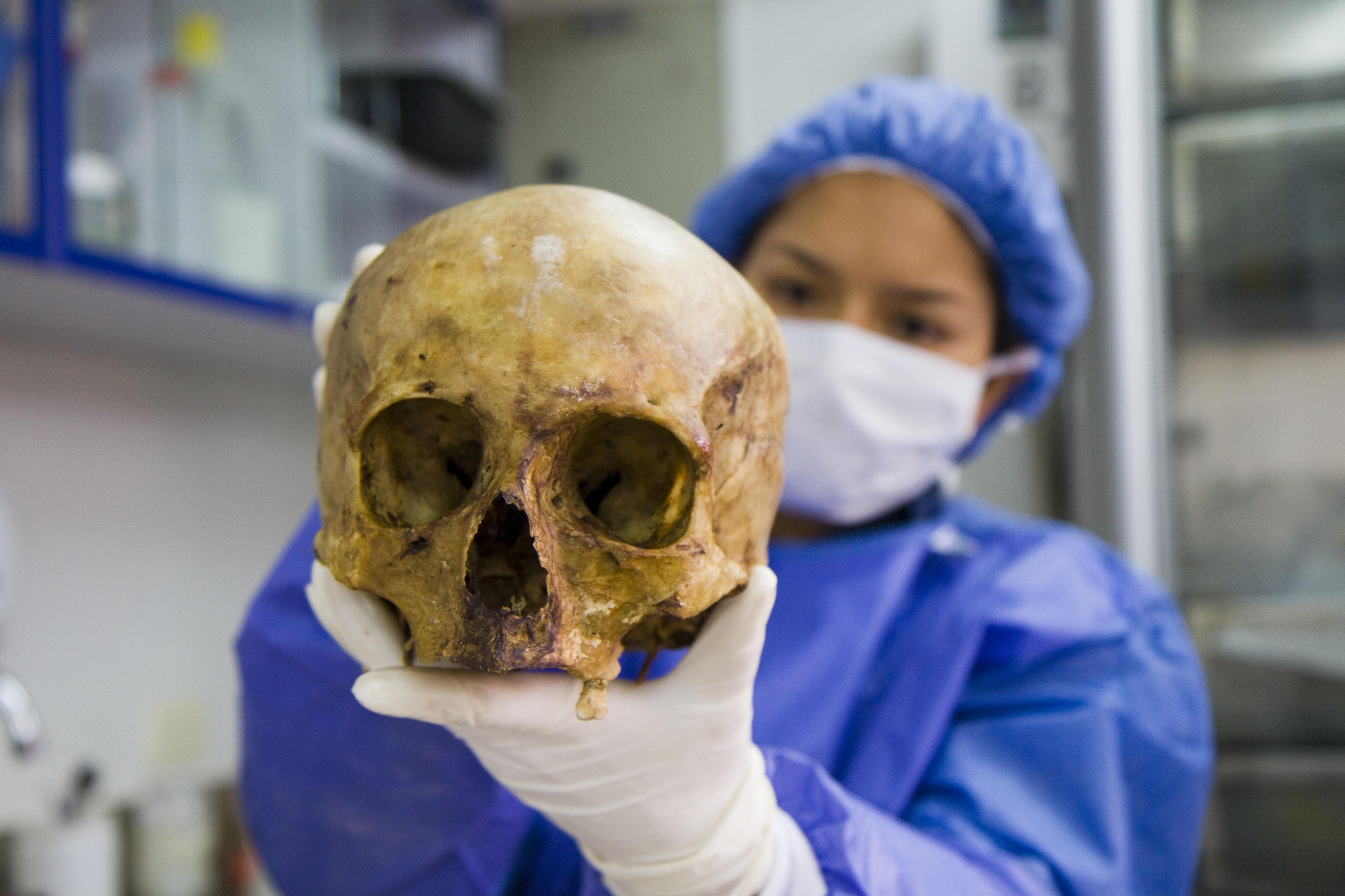 A women wearing laboratory over-clothes holds up a human skull