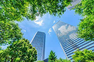Looking up at a blue sky with skyscrapers and trees in shot.