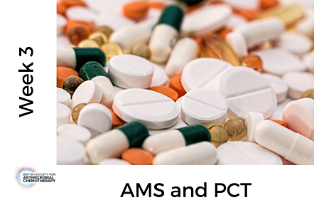 Close up photo of different tablets/pills, with text 'Week 3 - AMS and PCT'