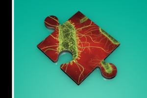 Pathogens under microscope causing infectious diseases