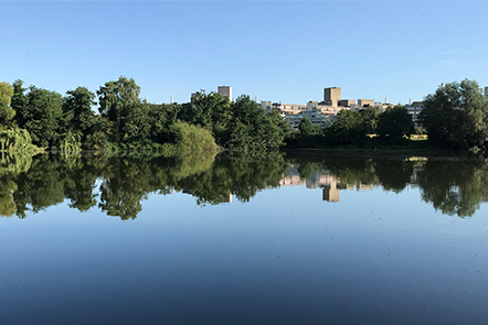 UEA Broad and buildings