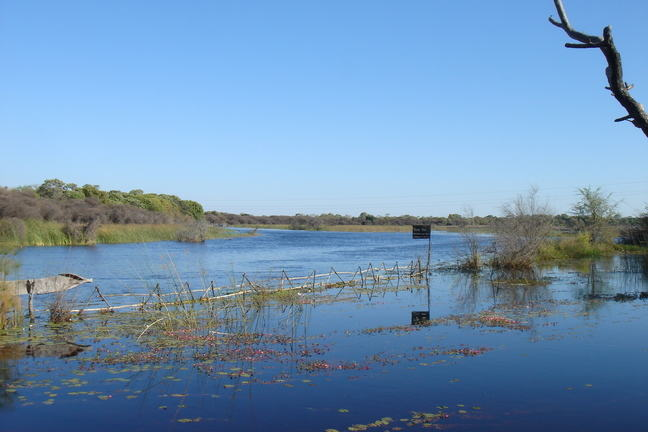 A photo of land completely flooded in Botswana