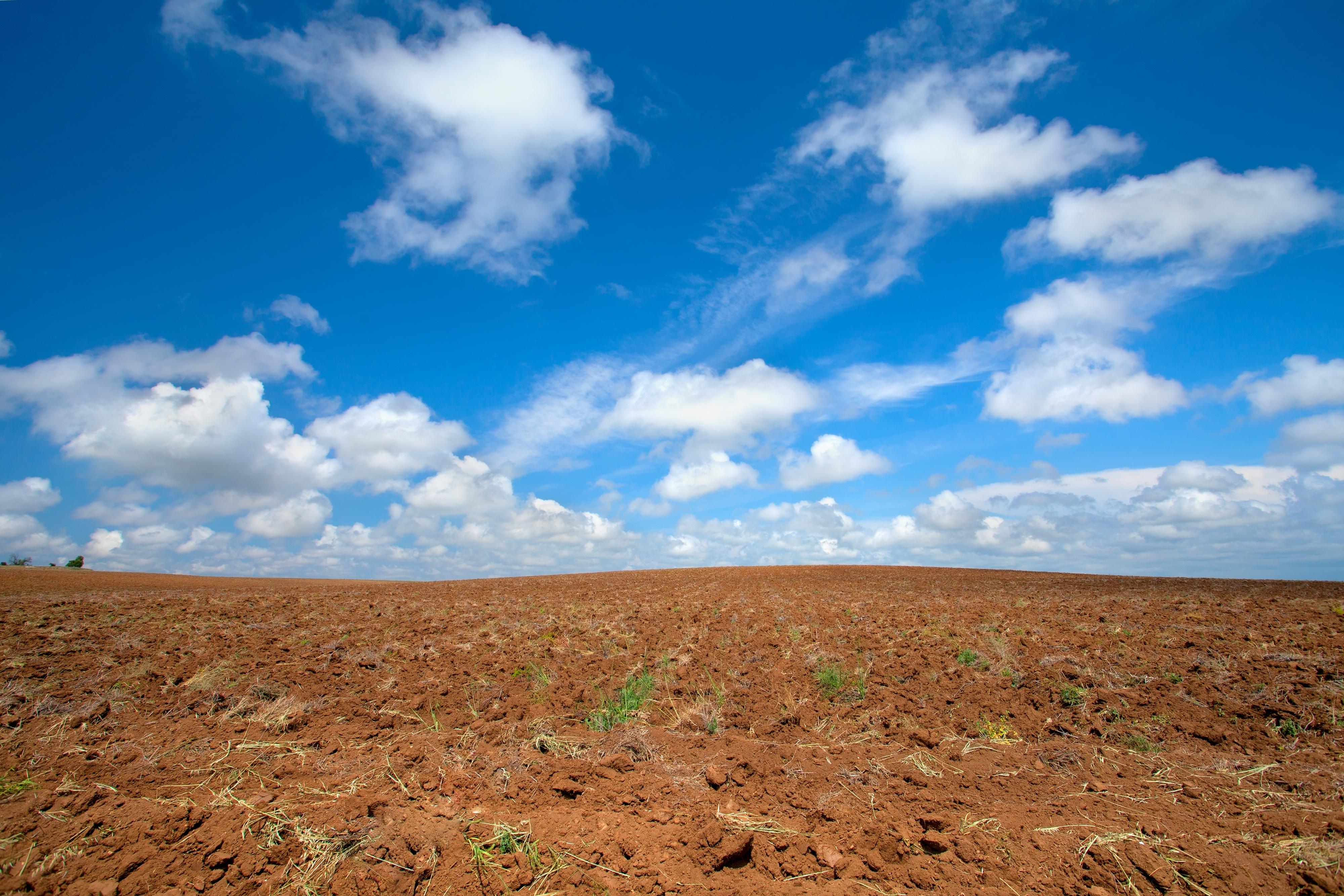 Plowed field with beautiful blue sky Plowed field with beautiful blue sky