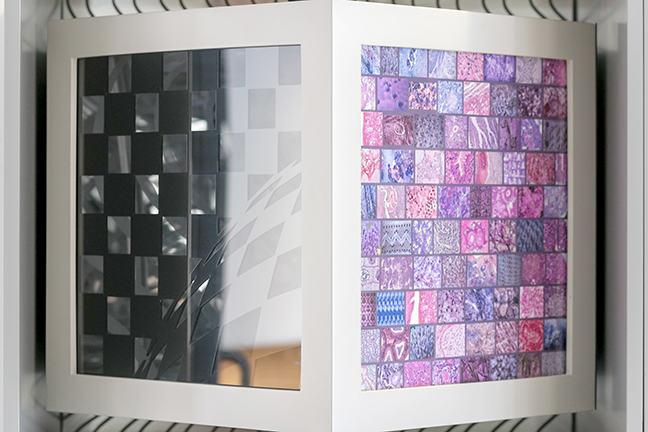 Cube Installation by Pippa Skotnes