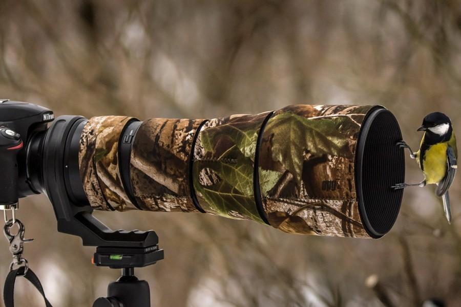 A bird perched on a camera lens