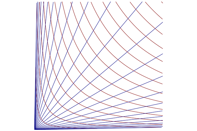 A grid with hyperbolas