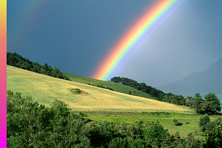 An image of a rainbow over a green field.