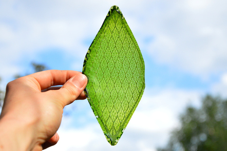 Decorative image, Silk Leaf, a green artificial leaf capable of photosynthesis being held up to the sun, by Julian Melchiorri 2014