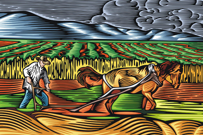 illustration of farmer and horse ploughing