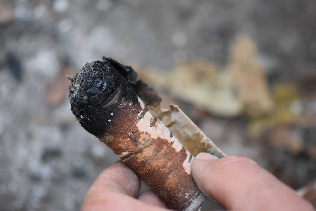 A replica birch bark roll which has been charred at one end