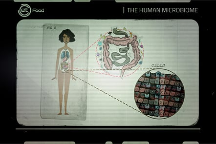 The digestive tract harbours the largest and most complex microbial community of the human body, the intestinal microbiota, including about 800 different bacteria species