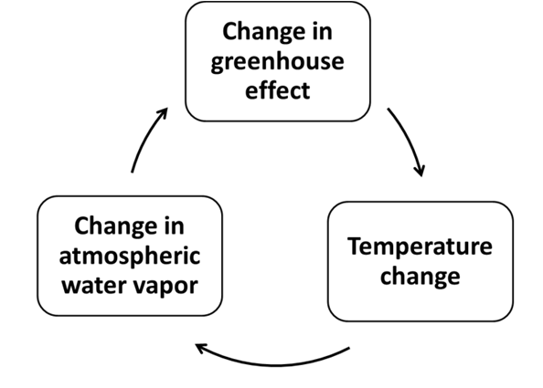 Circle diagram of water vapor feedbacks.