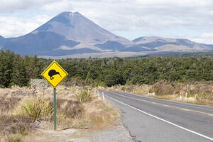 A kiwi bird road sign on a highway looking toward a mountain in New Zealand
