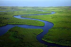 River by the ocean running through lush green wetlands