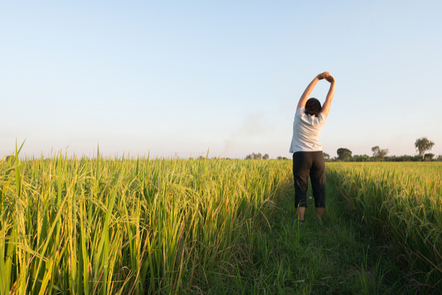 A woman stretching in a field