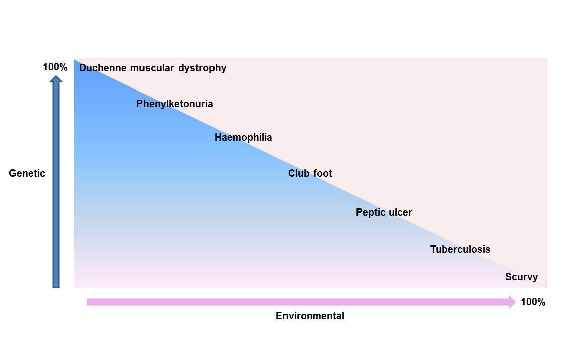 Duchenne muscular dystrophy graph with genetic and environmental as the X and Y axis respectively