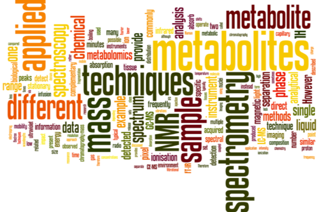 A word cloud showing the key words realting to other analytical technologies used in metabolomics
