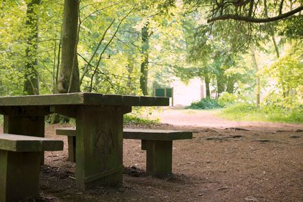 Photograph of a Bench in Leigh Woods