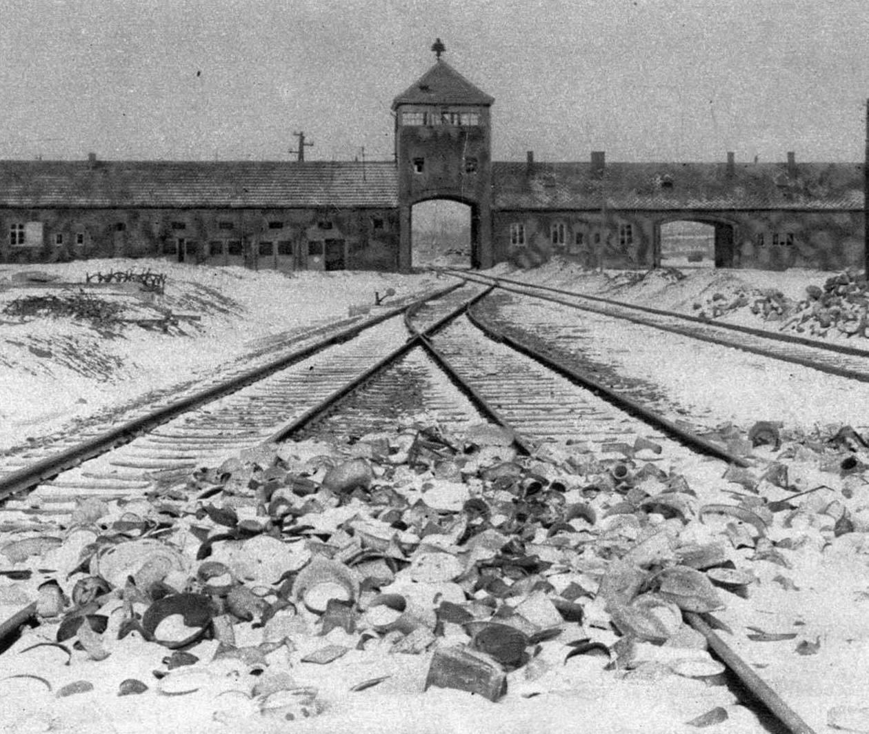 The Holocaust: an Introduction - Part 1