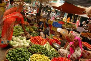 Udaipur Market
