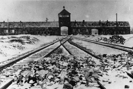 Liberated Buchenwald Slave Labourers