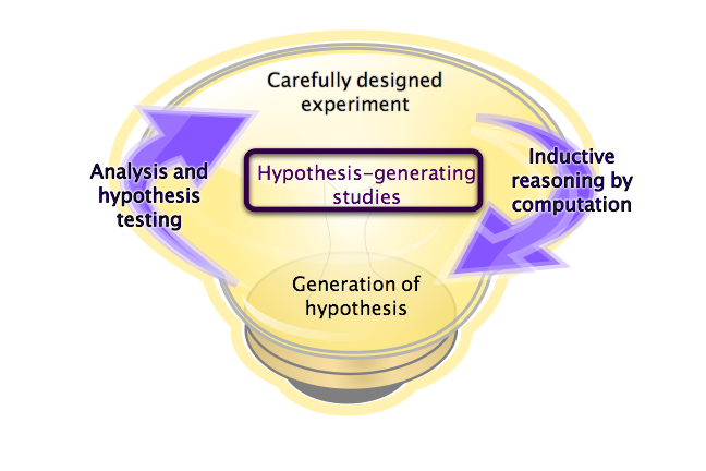 The cycle from discovery phase experiments to the generation of hypothesis, with a light bulb in the background