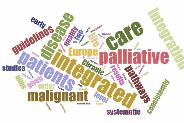 Words associated with palliative care
