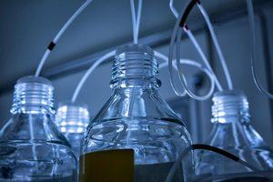 Bottles of water being used in a basic science experiment