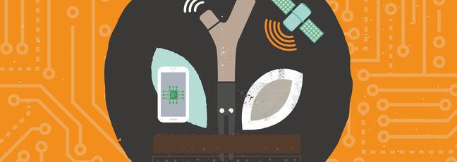 Illustration of a sensor in soil