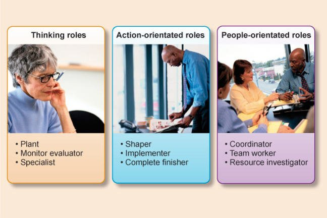 Thinking Roles (Plant, Monitor Evaluator, Specialist); Action-oriented Roles (Shaper, Implementer, Completer Finisher); People-oriented Roles (Coordinator, Team worker, Resource Investigator)