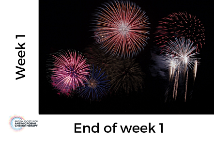 Photo of fireworks, with text 'Week 1 - End of week 1'