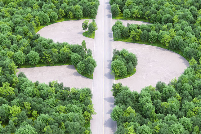 Raw forested land cut up by roads, symbolising the dollar sign