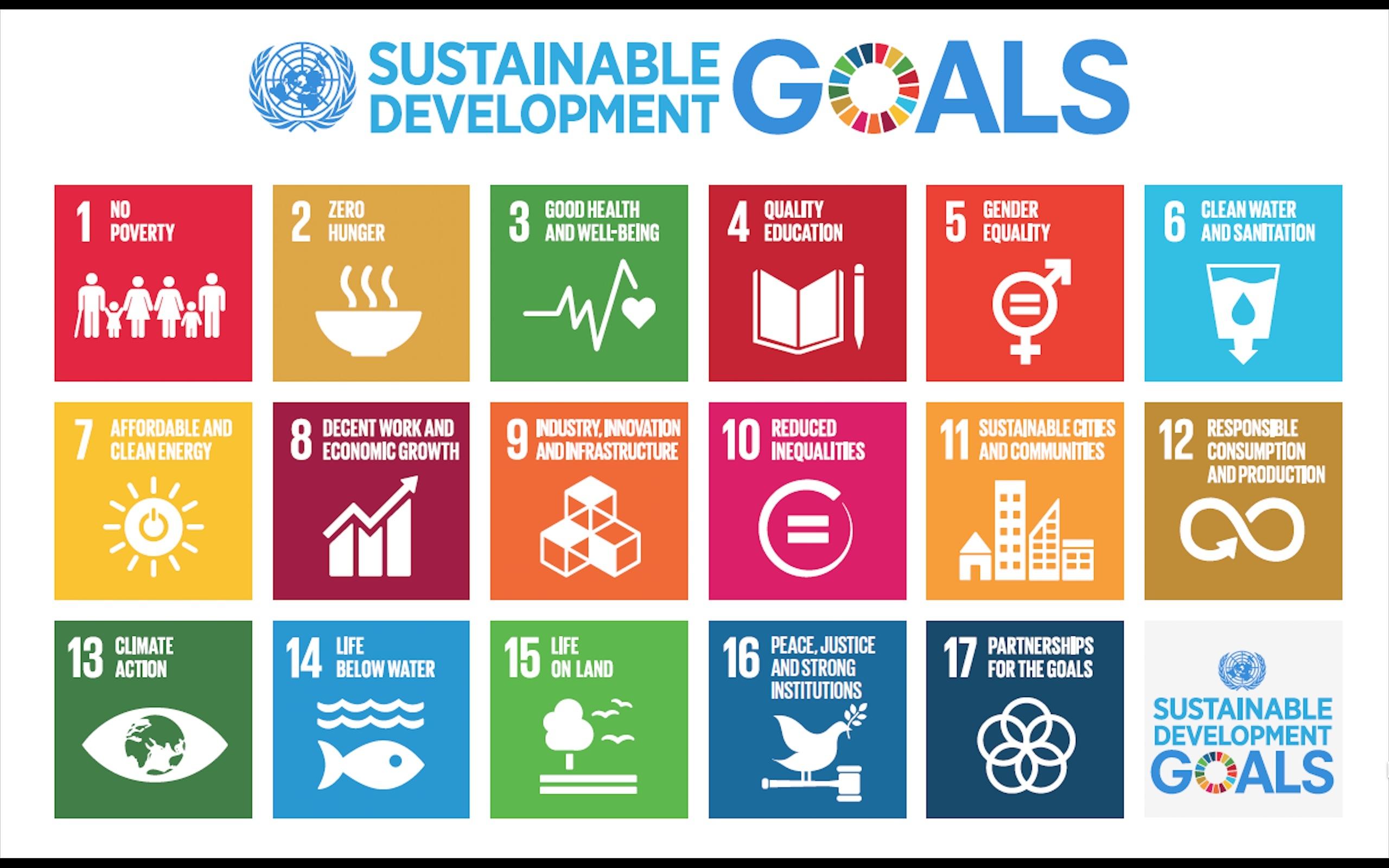 Sustainable Development Goals (SDGs) depicting 17 steps.