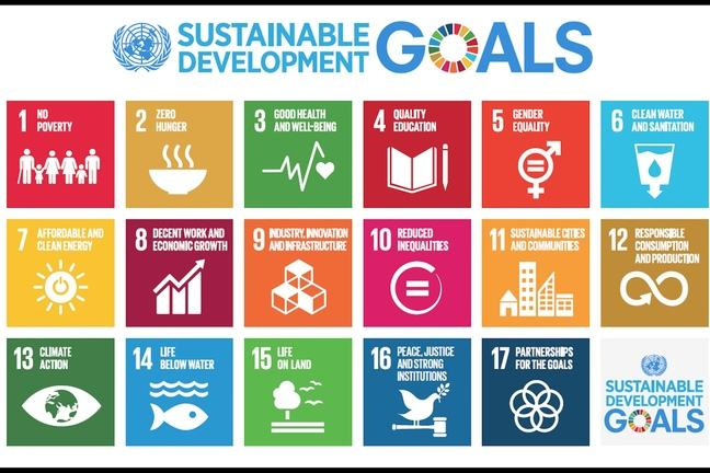 Sustainable Development Goals (SDGs) depicting 17 steps.