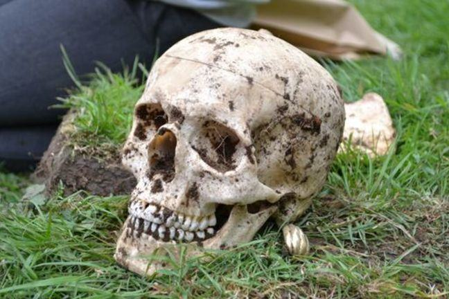 A close-up image of a skull (a cast) resting on some grass. The skulls has soil adhering to it.