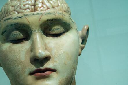 Museum piece of a model of a human face with the eyes closed revealing part of the brain