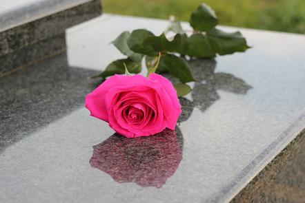 Rose on granite memorial slab