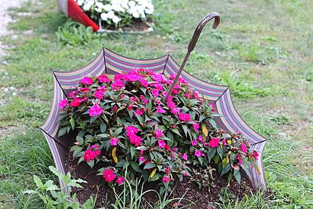 Using umbrella as a platform for flowers.