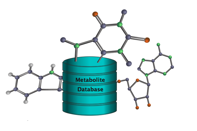 A database with several metabolites