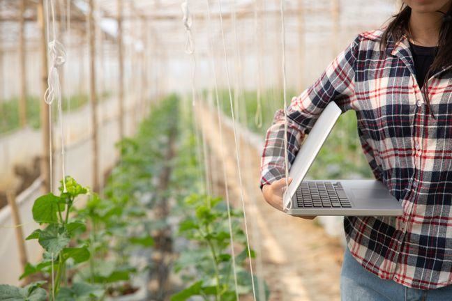 A colour photo taken in a greenhouse, to the right is the torso of someone wearing jeans and a check shirt. They have a half open laptop under their right arm.