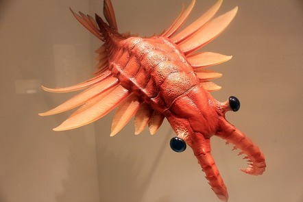 A model of the prehistoric anomalocaris, which looks like the rear end of a shrimp.
