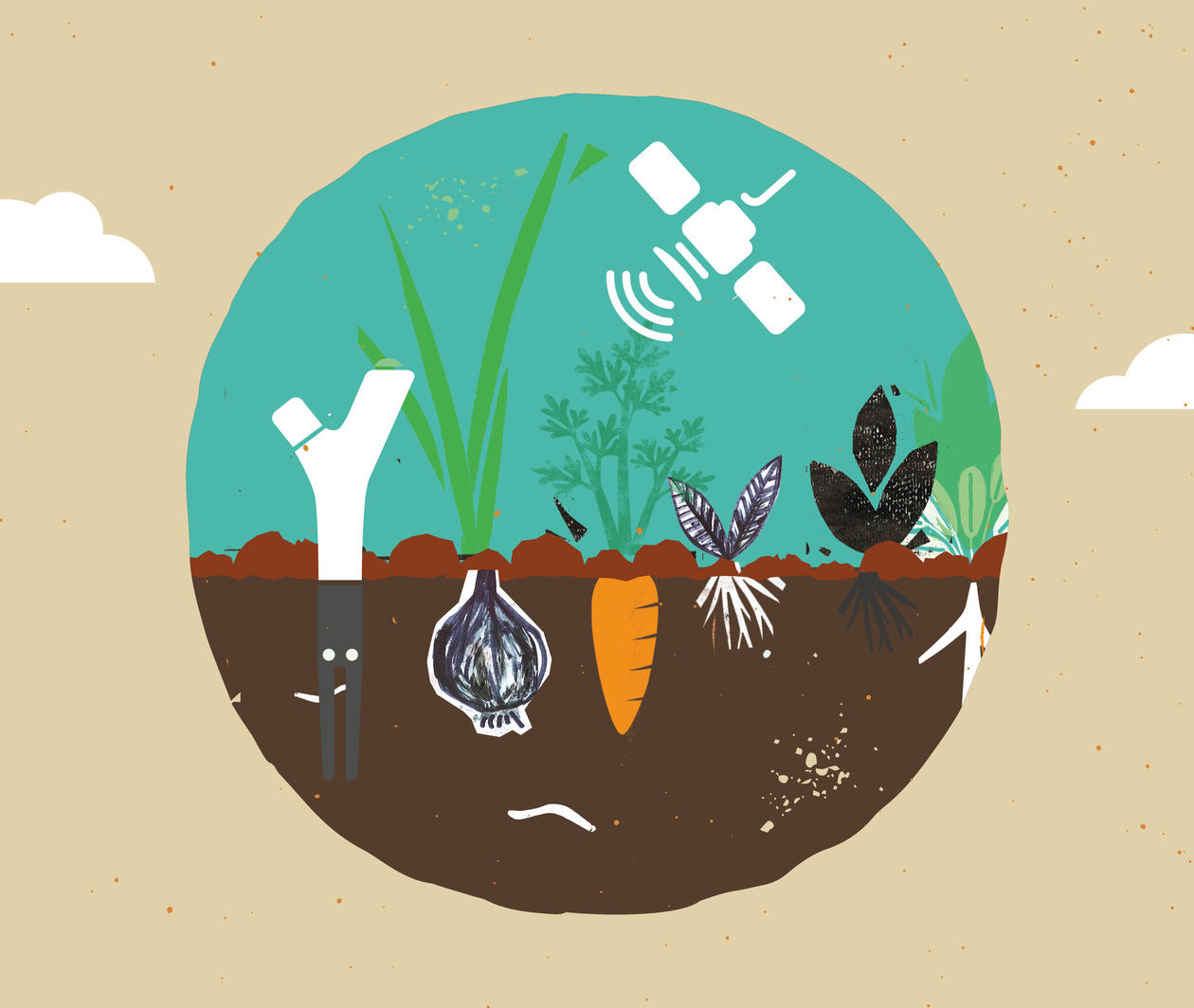 Citizen Science: From Soil to Sky