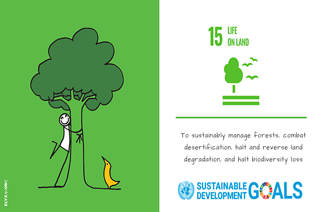 The icon for SDG 15