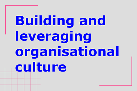 Building and leveraging organisational culture