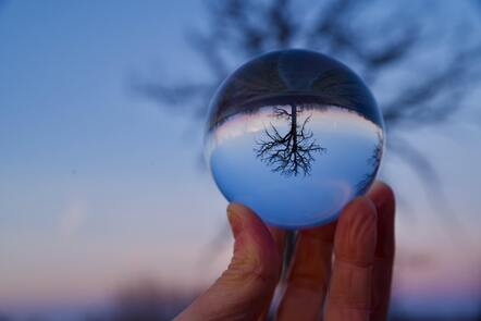Ball of water held up by a hand with the reflection of a tree inside